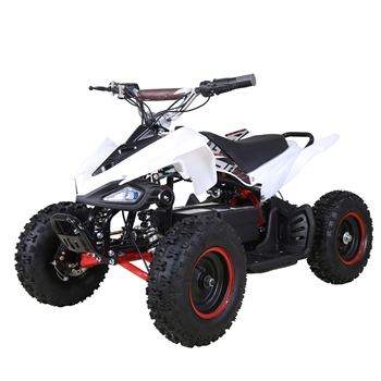 TAOTAO E1 500 Electric ATV