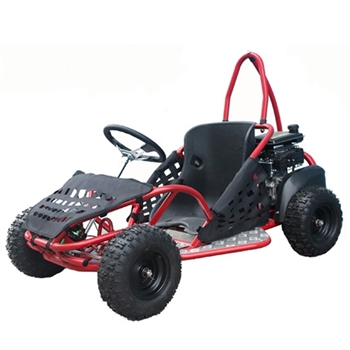80cc GoKart Power Buggie