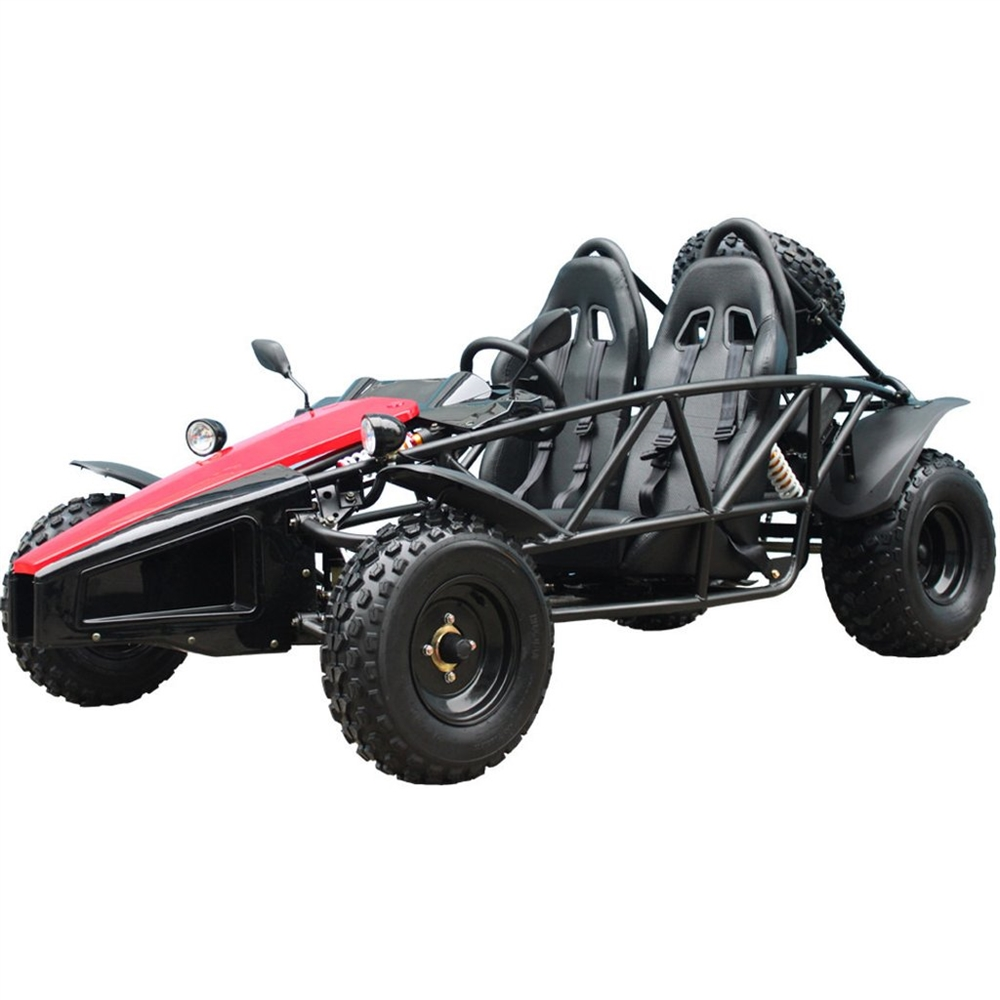 Tao Tao ARROW 200 Go Kart Upgraded Version
