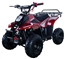 110cc Kids ATV, Vitacci Hawk 110cc Kids ATV
