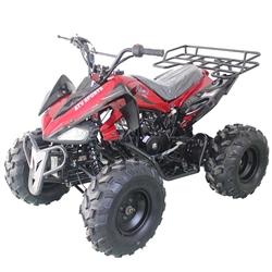 Vitacci, ATVs, scooters, go karts, dirt bikes