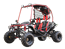 VZ 200cc GoKart Power Buggie PathFinder