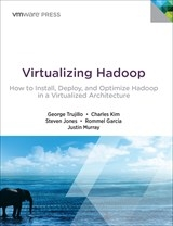 Virtualizing Hadoop: How to Install, Deploy, and Optimize Hadoop in a Virtualized Architecture (eBook)