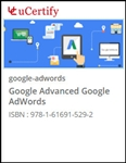 Google Advanced Google AdWords Courseware
