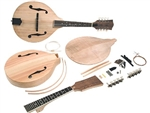 Saga AM-10 Build Your Own Mandolin Kit Build Kit