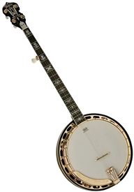 Washburn B17K 5-String Carved Bluegrass Banjo w/ Hard Case