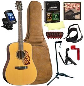 blueridge br 140 dreadnought acoustic guitar deluxe package bundle combo. Black Bedroom Furniture Sets. Home Design Ideas