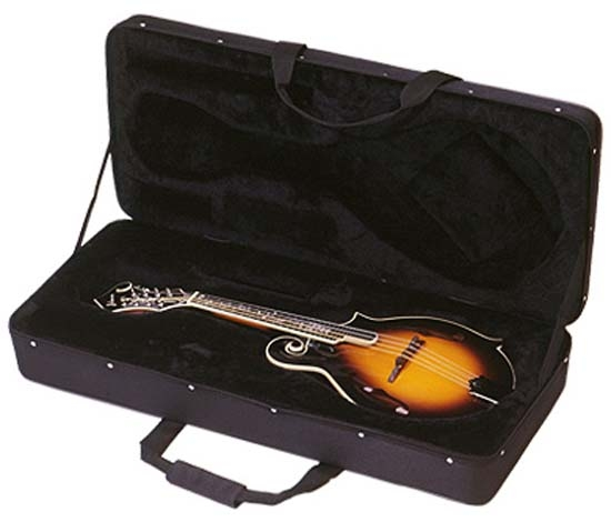 Guardian CG-010-E Featherweight Case Electric Guitar