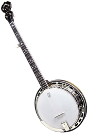 Deering Maple Blossom Professional 5 String Banjo. Free Case, Setup and Shipping!