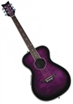 Daisy Rock Pixie Acoustic/Electric Guitar Purple Plum Burst 14-6222