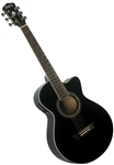 Washburn EA10B Festival Series Petite Jumbo Acoustic Electric Guitar - Black