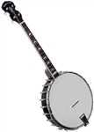Gold Tone IT-250 4 String Open Back Irish Tenor Banjo w/ Bag