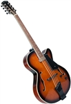 Gold Tone Mandocello Folkternative Guitar-Style A/E Mandolin Cello with Hard Case