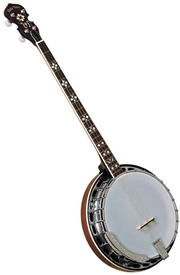 Gold Tone PS-250 Banjo Plectrum Special. Free hard case, shipping and setup!
