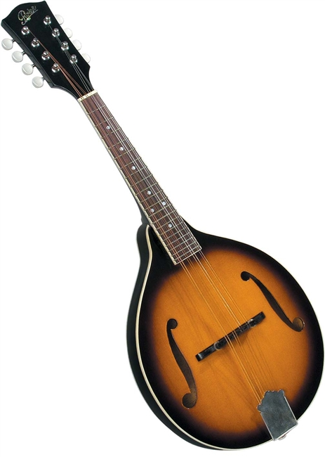 Rover RM 50 Mandolin All Solid A Model Player Series