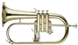 RS Berkeley FLU668 Signature Series Lacquer Flugelhorn with Case, Stand, Care Kit