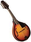 Morgan Monroe RT-M1 Rocky Top Series A-Style Mandolin