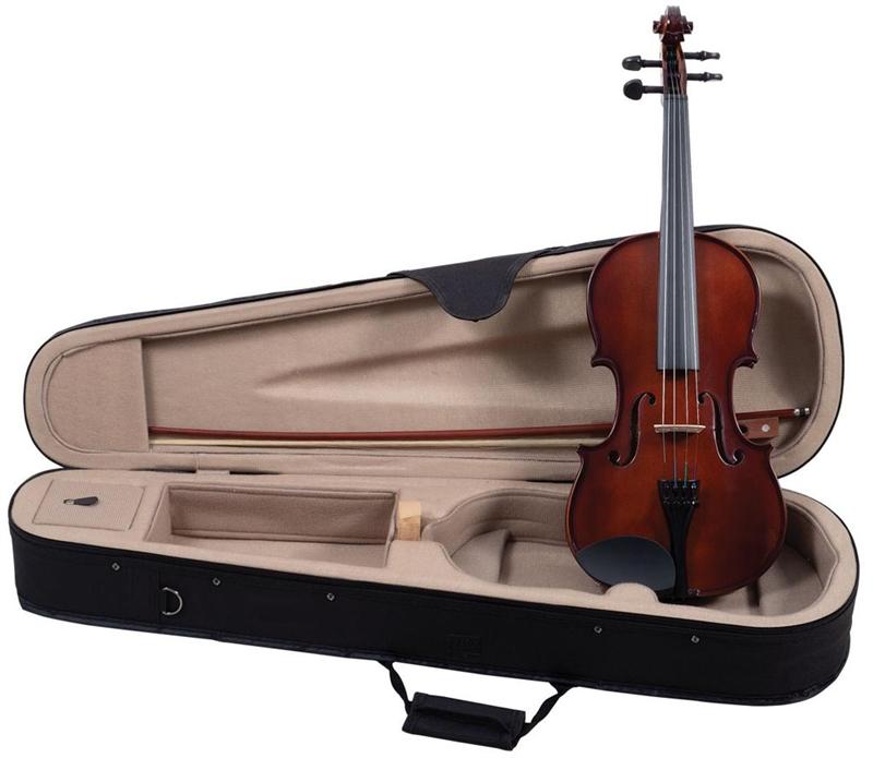palatino vn 350 violin hand carved violin campus outfit