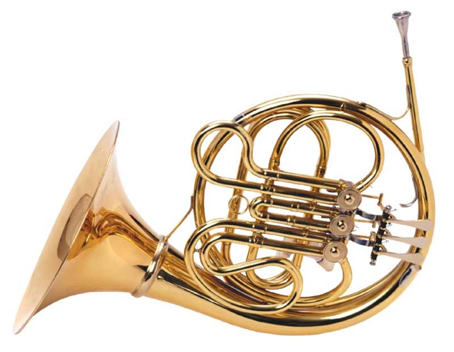 palatino wi 823 fh single horn f 3 french horn with hard case usa