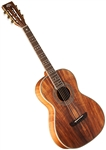 Washburn WP55NS P55 Koa Parlor Body Acoustic Guitar