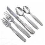 Satin Shasta by Oneida, Stainless 5-PC Setting w/ Soup Spoon