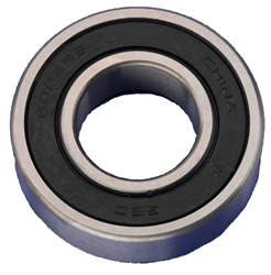 BEARING-AXLE-REAR (6004-RS)