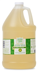 Hand Soap Defense 1 Gallon