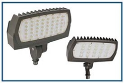 Compact flood light