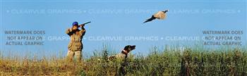 Pheasant 3 Hunting Rear Window Graphic