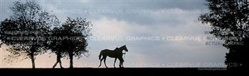 Sunset Horse Rear Window Graphic