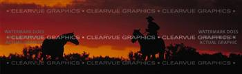 Twilight Horse Rear Window Graphic