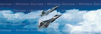 Raptor Rapture Aircraft Rear Window Graphic