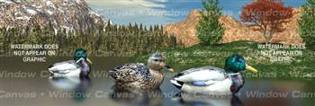 Mountain Morning Birds & Ducks Rear Window Graphic