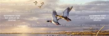 Sundown At Delta Marsh Birds & Ducks Rear Window Graphic