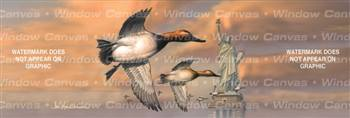 Liberty Canvasbacks Birds & Ducks Rear Window Graphic