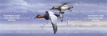 Canvasbacks Birds & Ducks Rear Window Graphic