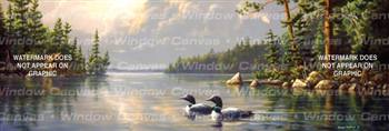 Summertime Loons Birds & Ducks Rear Window Graphic