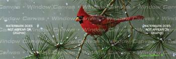 Winter Snowfall Cardinal Birds & Ducks Rear Window Graphic