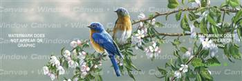 Spring Blossom Bluebirds Birds & Ducks Rear Window Graphic