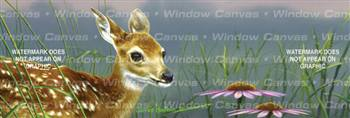 Fawn And Flowers Deer Rear Window Graphic