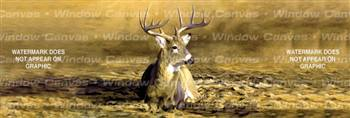October Sun Deer Rear Window Graphic