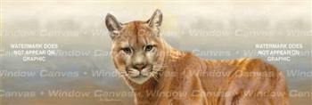 Cougar Feline Rear Window Graphic