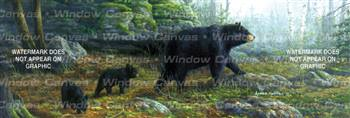 Northern Explorers Wildlife Rear Window Graphic