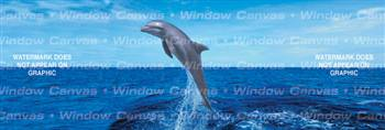 Life Is Good Ocean Life Rear Window Graphic