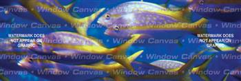 Follow The Leader Ocean Life Rear Window Graphic