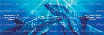 Together Ocean Life Rear Window Graphic