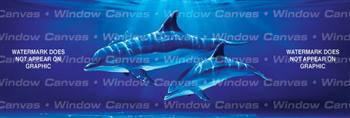 Dolphin Dive Ocean Life Rear Window Graphic