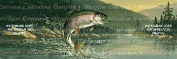 Rainbow Trout Fishing Rear Window Graphic