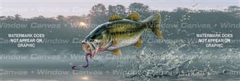 First Of The Day Fishing Rear Window Graphic