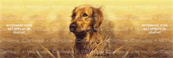 Golden Portrait Dog Rear Window Graphic
